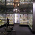 ハンテリアン博物館で有名なジョン・ハンターの破天荒だけじゃない生涯