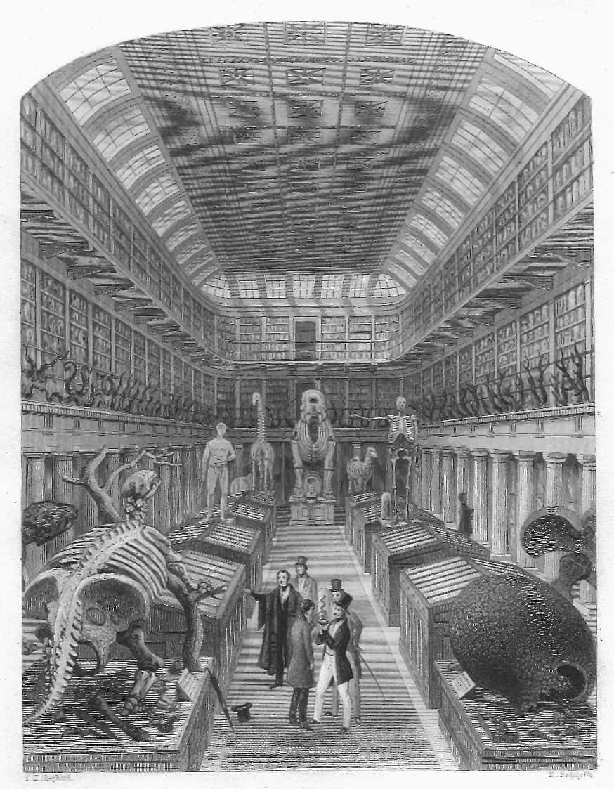 19世紀中頃のハンテリアン博物館