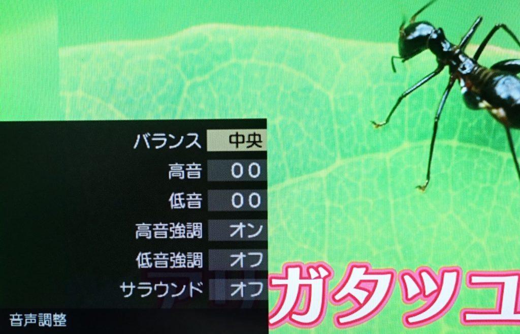 テレビの音声設定画面